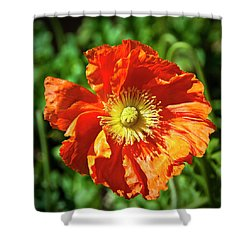 Good Morning Sunshine Shower Curtain by Tamyra Ayles