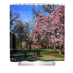 Goodale Park In The Spring Shower Curtain