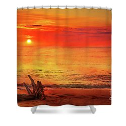 Shower Curtain featuring the digital art Goodbye Day by Randy Steele