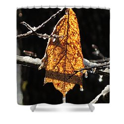 Goodbye To Autumn Shower Curtain