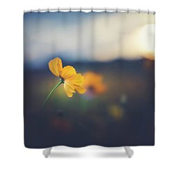 Shower Curtain featuring the photograph Goodnight Sun by Shane Holsclaw