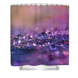 Shower Curtain featuring the photograph Goodnight Sweet Prince by Melanie Moraga