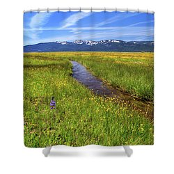 Shower Curtain featuring the photograph Goodrich Creek by James Eddy