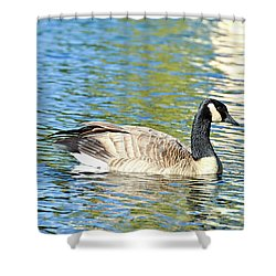 Shower Curtain featuring the photograph Goose And Sun Reflections by David Lawson