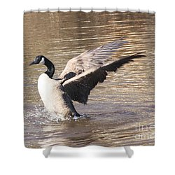 Goose Flapping Wings Shower Curtain