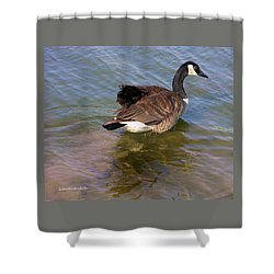 Goose Shower Curtain by John Lautermilch