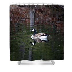 Goose On A Pond Shower Curtain