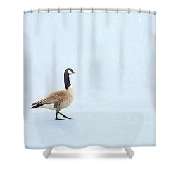 Shower Curtain featuring the photograph Goose Step by Nikolyn McDonald