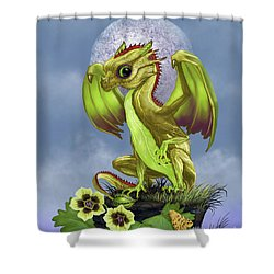 Gooseberry Dragon Shower Curtain by Stanley Morrison
