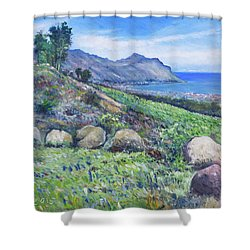 Gordon's Bay Cape Town South Africa Shower Curtain by Enver Larney