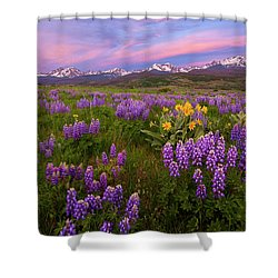 Gore Range Sunrise Shower Curtain by Aaron Spong
