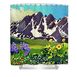 Gore Range Wildflowers Shower Curtain