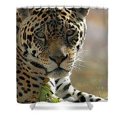 Gorgeous Jaguar Shower Curtain by Sabrina L Ryan