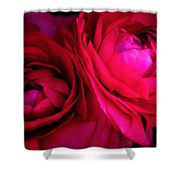 Gorgeous Sisters Shower Curtain