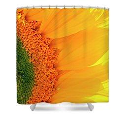 Gorgeous Sunflower Macro Shower Curtain