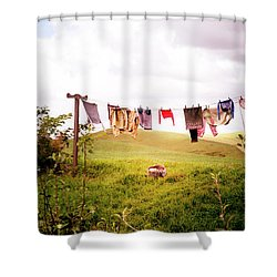 Gorgeous Sunny Day For Hobbits Shower Curtain