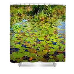 Gorham Pond Lily Pads Shower Curtain