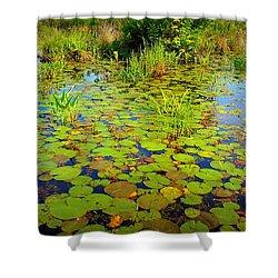 Gorham Pond Lily Pads Shower Curtain