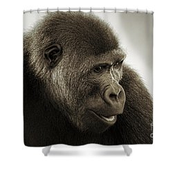 Shower Curtain featuring the photograph Gorilla Portrait by Mitch Shindelbower