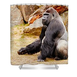 Gorilla Sitting Upright Shower Curtain