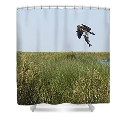 Got Dinner Shower Curtain