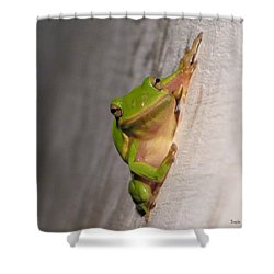 Got Flies Shower Curtain