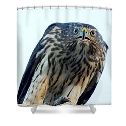 Got My Eyes On You Shower Curtain