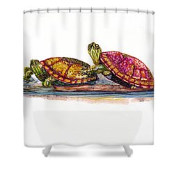 Spring Turtles Shower Curtain
