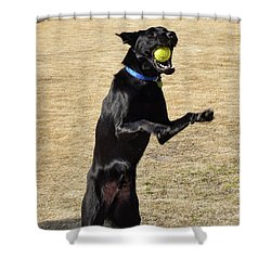 Gotcha Shower Curtain