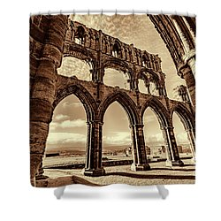 Shower Curtain featuring the photograph Gothic Dreams by Anthony Baatz
