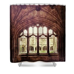 Shower Curtain featuring the photograph Gothic Window by Jill Battaglia