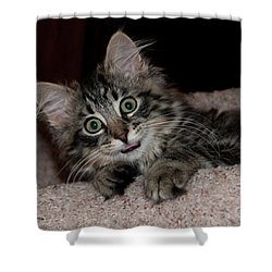 Grace 1088 Shower Curtain by Guy Whiteley
