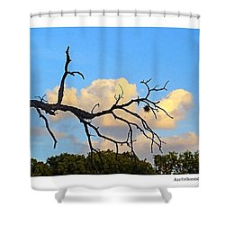 #grace And #beauty In The #texas #sky Shower Curtain