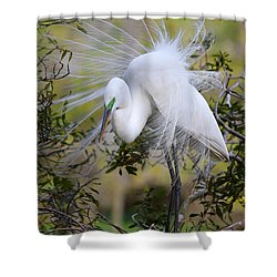 Grace In Nature Shower Curtain