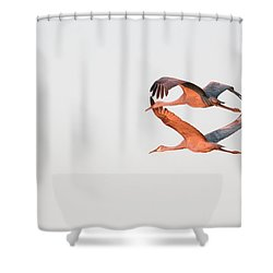 Shower Curtain featuring the photograph Grace by Kelly Marquardt