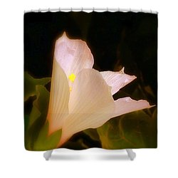 Grace Shower Curtain by Priscilla Richardson