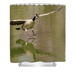 Graceful Goose Shower Curtain
