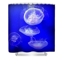 Graceful Jellies - Ballerinas Of The Sea Shower Curtain