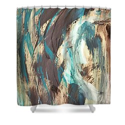 Grafetti Art Shower Curtain