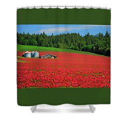 Grain Bins Barn Red Clover Shower Curtain by Jerry Sodorff