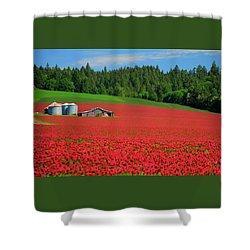Grain Bins Barn Red Clover Shower Curtain