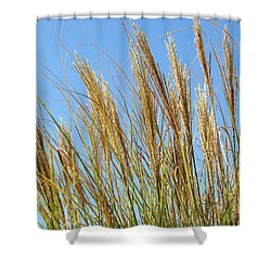 Shower Curtain featuring the photograph Grains Of Grass In The Wind by Bonnie Muir