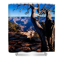 Shower Curtain featuring the photograph Grand Canyon 27 by Donna Corless