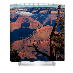 Shower Curtain featuring the photograph Grand Canyon 30 by Donna Corless