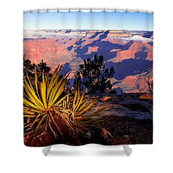 Shower Curtain featuring the photograph Grand Canyon 31 by Donna Corless