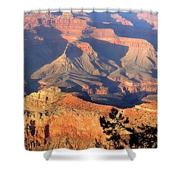 Grand Canyon 50 Shower Curtain by Will Borden