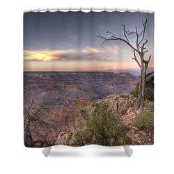 Grand Canyon 991 Shower Curtain