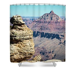 Grand Canyon Duck On A Rock Shower Curtain