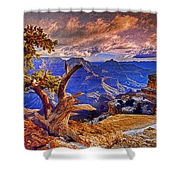 Grand Canyon Pine Shower Curtain by Dennis Cox WorldViews