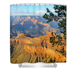 Grand Canyon South Rim - Pine At Right Shower Curtain